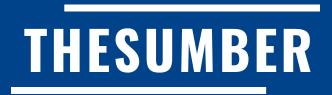 Thesumber.com Permohonan Dan Semakan